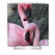 Flamingo Love Birds Shower Curtain