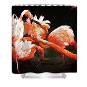 Flamingo Mingles Shower Curtain