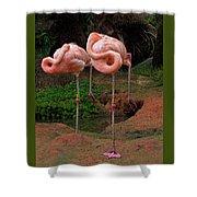 Flamingo See Flamingo Do Shower Curtain
