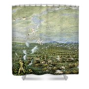 Flamingo Shooting In South America  Shower Curtain