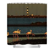 Flamingo Sunrise Shower Curtain