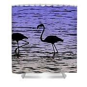 Flamingo Walk - Venezuela Shower Curtain