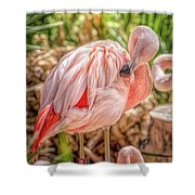Flamingo2 Shower Curtain