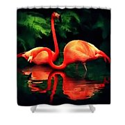 Flamingos - 1 H B Shower Curtain