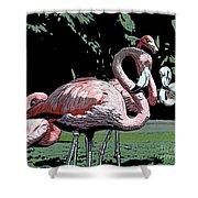 Flamingos I Shower Curtain