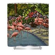Flamingos Vintage Postcard Shower Curtain