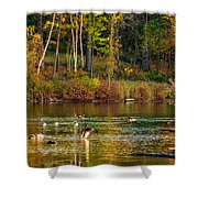 Flapping For Fall Shower Curtain