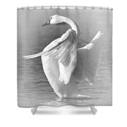 Flapping In Black And White Shower Curtain