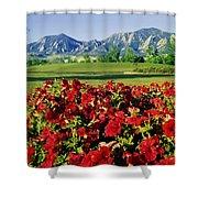 210546-v-flatirons And Flowers V  Shower Curtain
