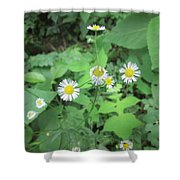 Flawed Perfection Shower Curtain