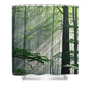 Fleeting Beams Shower Curtain by Evgeni Dinev