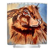Flemish Hare Shower Curtain