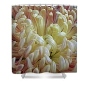 Curled Flower Shower Curtain