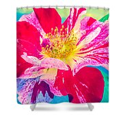 Fleurie Peppermint Rose High Key Shower Curtain