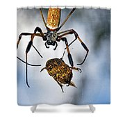 Flew In For Dinner Shower Curtain