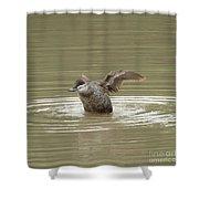 Flexing Shower Curtain