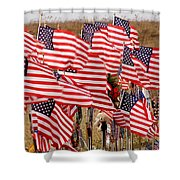 Flight 93 Shower Curtain