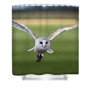 Flight Of The Barn Owl Shower Curtain