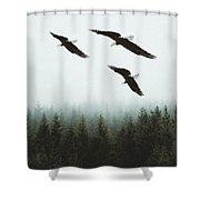 Flight Of The Eagles Shower Curtain