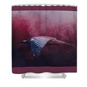 Flight Of The Egret Shower Curtain