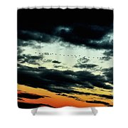 Flight Of The Geese Shower Curtain