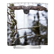 Flight Of The Great Gray Shower Curtain