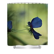 Flight Of The Lobelia  Shower Curtain