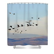 Flight Of The Waterfowl Shower Curtain