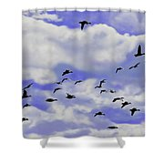 Flight Over Lake Shower Curtain