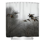 Flight To The Fields Shower Curtain