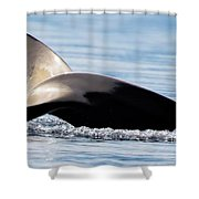 Flipside Shower Curtain