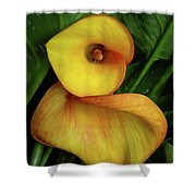 Flirtation Shower Curtain