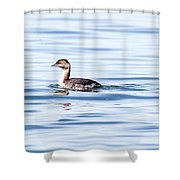 Float Grebe Shower Curtain