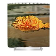 Floating Beauty - Hot Orange Chrysanthemum Blossom In A Silky Fountain Shower Curtain