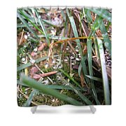 Floating Crystals Shower Curtain