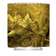 Floating Foliage Shower Curtain by Ed Smith