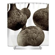 Floating Gourds Shower Curtain