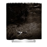 Floating In Light Shower Curtain by Scott Sawyer