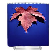 Floating Leaf 2 - Maple Shower Curtain