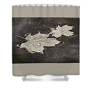 Floating Maple Leaves Bw Shower Curtain