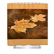 Floating Maple Leaves Pnt Shower Curtain