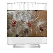 Floating Milkweed In Macro Shower Curtain