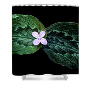 Floating Peacock Plant Shower Curtain