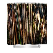 Floating Reeds Shower Curtain