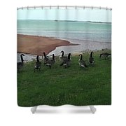 Flock Shower Curtain