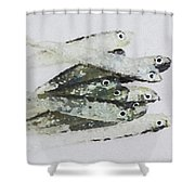 Flock Of Lures Shower Curtain