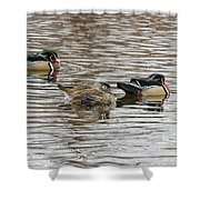 Flocked Shower Curtain