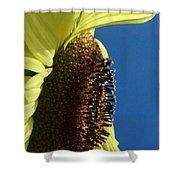 Flower Face 811 Shower Curtain
