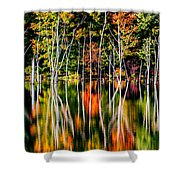 Flood Shower Curtain