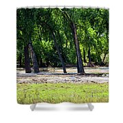 Flood Plain Shower Curtain